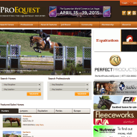 Psychological Tips and Tools for Trying a New Horse